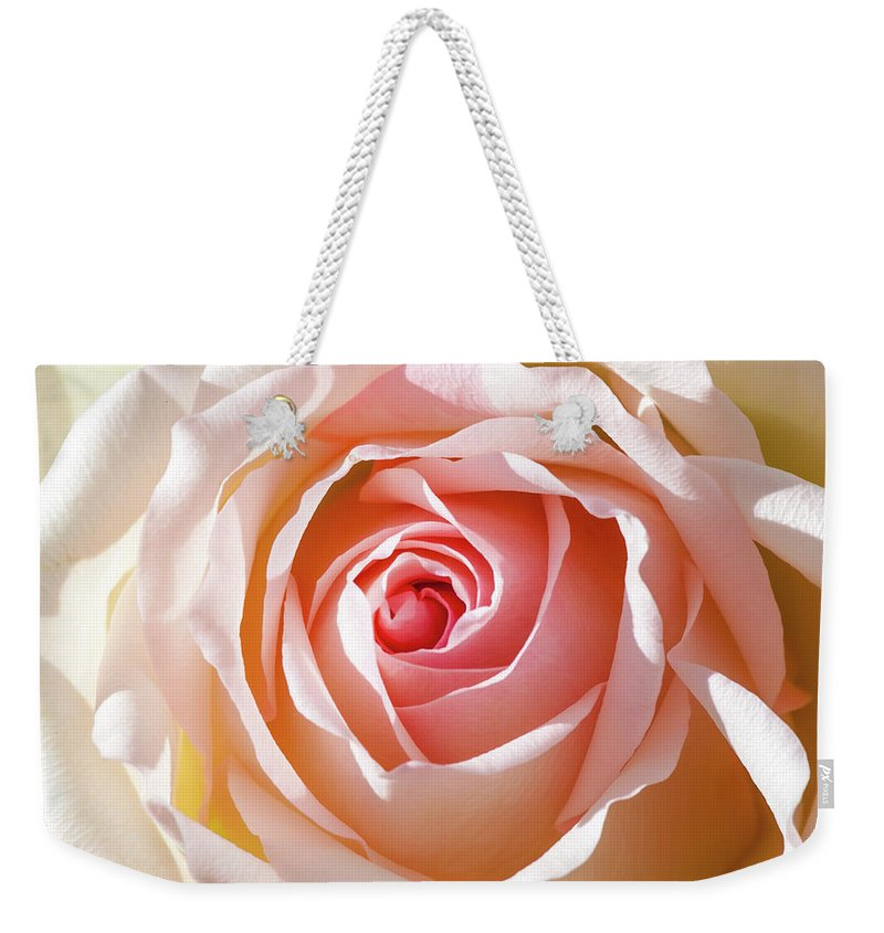 Pink Rose Weekender Tote Bag featuring the photograph Soft As A Rose by Az Jackson