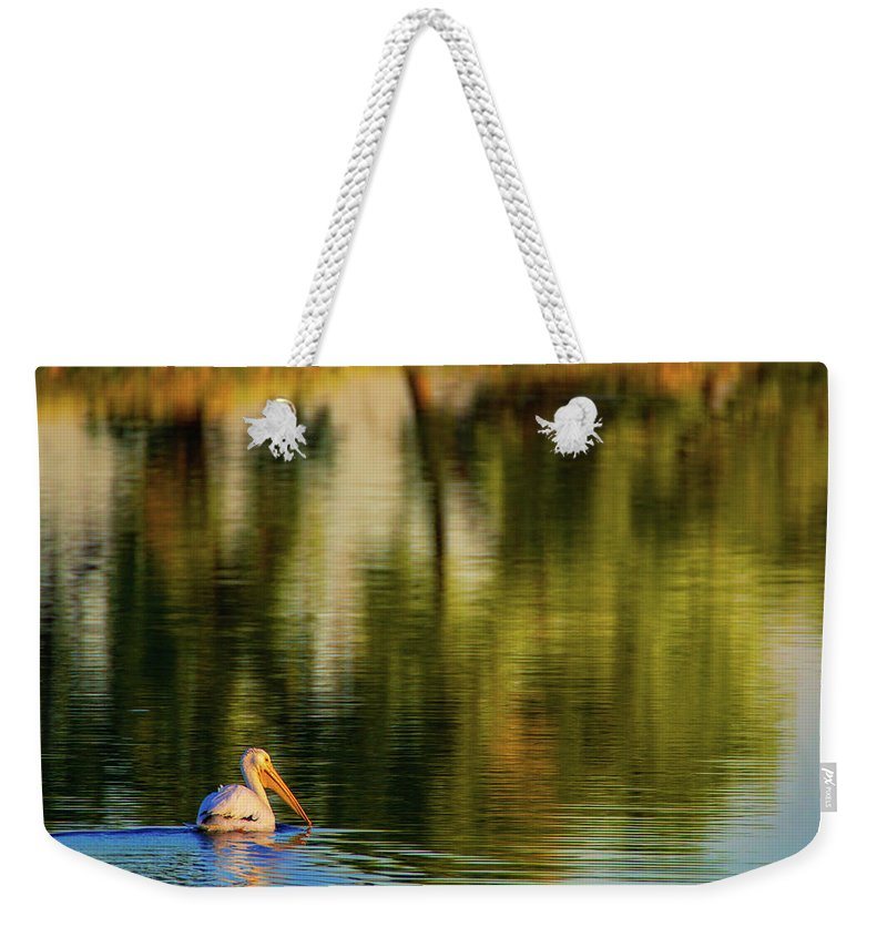 American White Pelican Weekender Tote Bag featuring the photograph Pelican In Sunlight by John De Bord