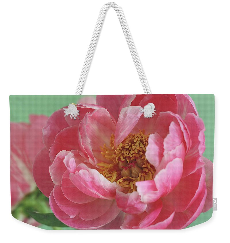 California Weekender Tote Bag featuring the photograph Peony by © 2011 Staci Kennelly