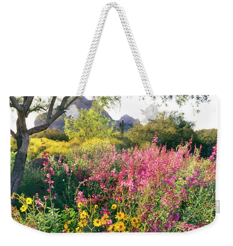 Scenics Weekender Tote Bag featuring the photograph Phoenix Botanical Gardens by Richard Felber