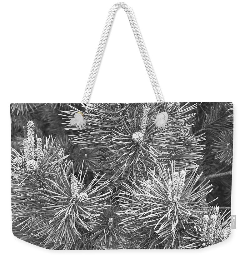 Needle Weekender Tote Bag featuring the photograph Pine Cones And Needles, Close-up B&w by George Marks