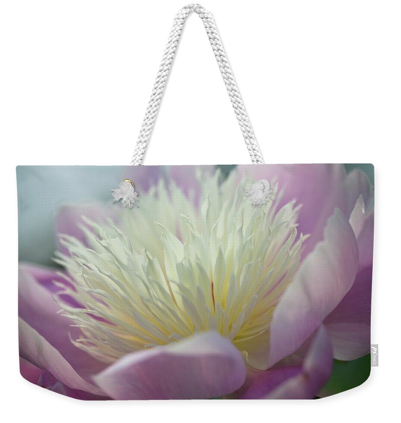 Toronto Weekender Tote Bag featuring the photograph Pink And White Peony by Lynda Murtha