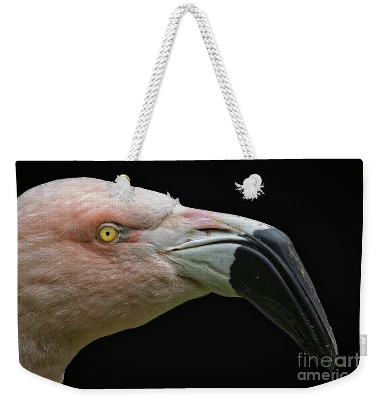 Pink On Black Weekender Tote Bag featuring the photograph Pink Flamingo Profile by Mitch Shindelbower
