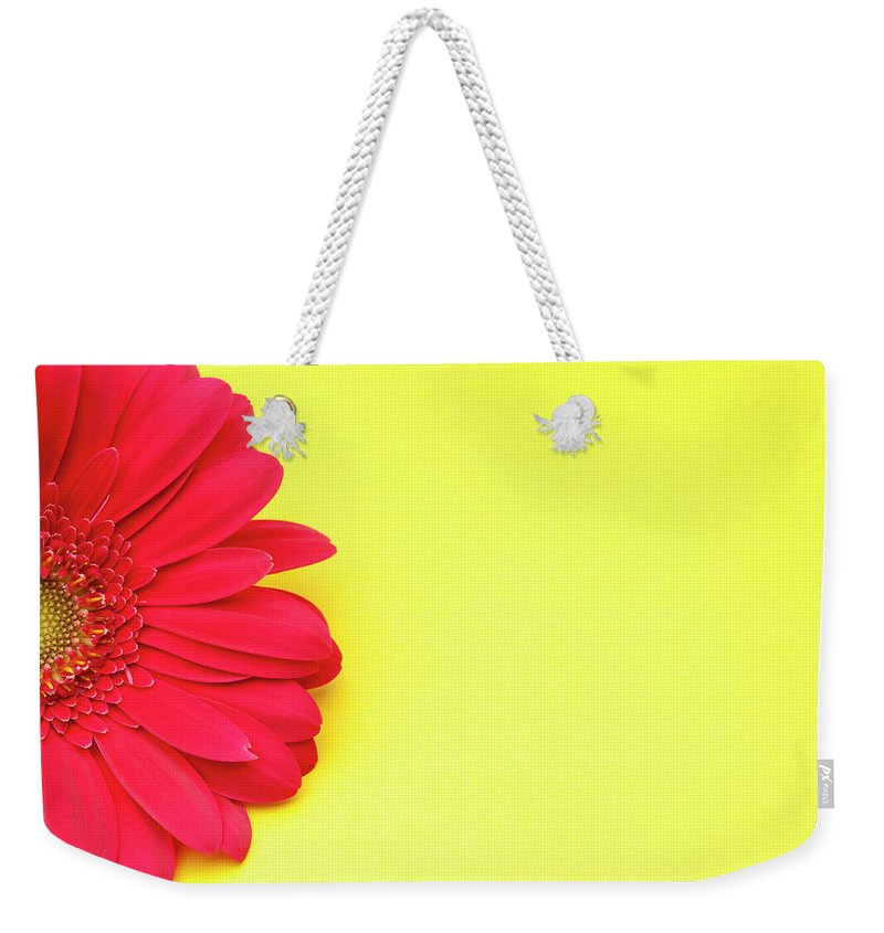 Petal Weekender Tote Bag featuring the photograph Pink Gerbera Daisy On Yellow Background by Jill Fromer