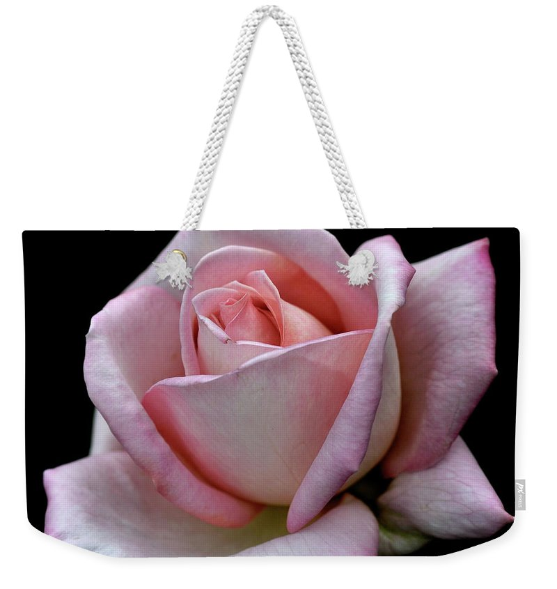 Part Of A Series Weekender Tote Bag featuring the photograph Pink Rose by I Love Photo And Apple.