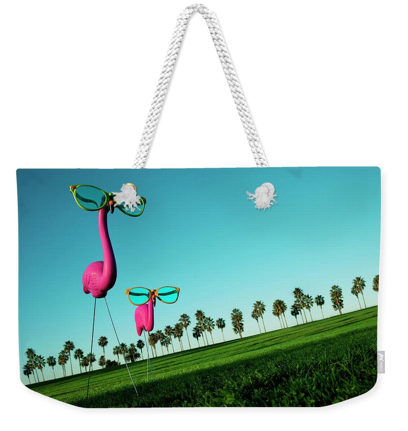 Artificial Weekender Tote Bag featuring the photograph Plastic Pink Flamingos On A Green Lawn by Skodonnell