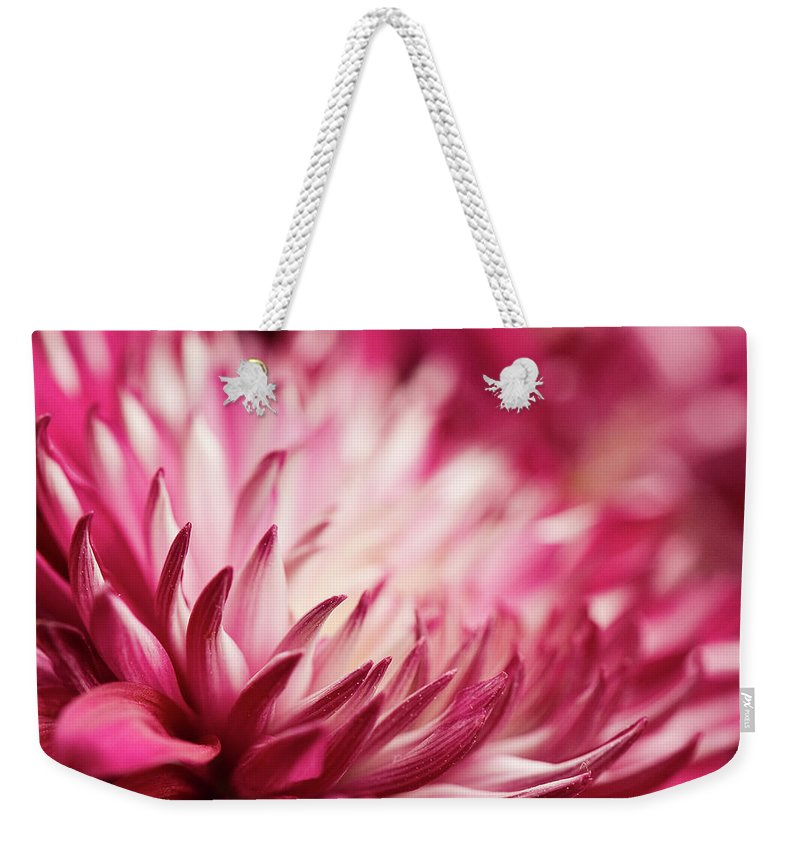 Petal Weekender Tote Bag featuring the photograph Poised Petals by Jody Trappe Photography