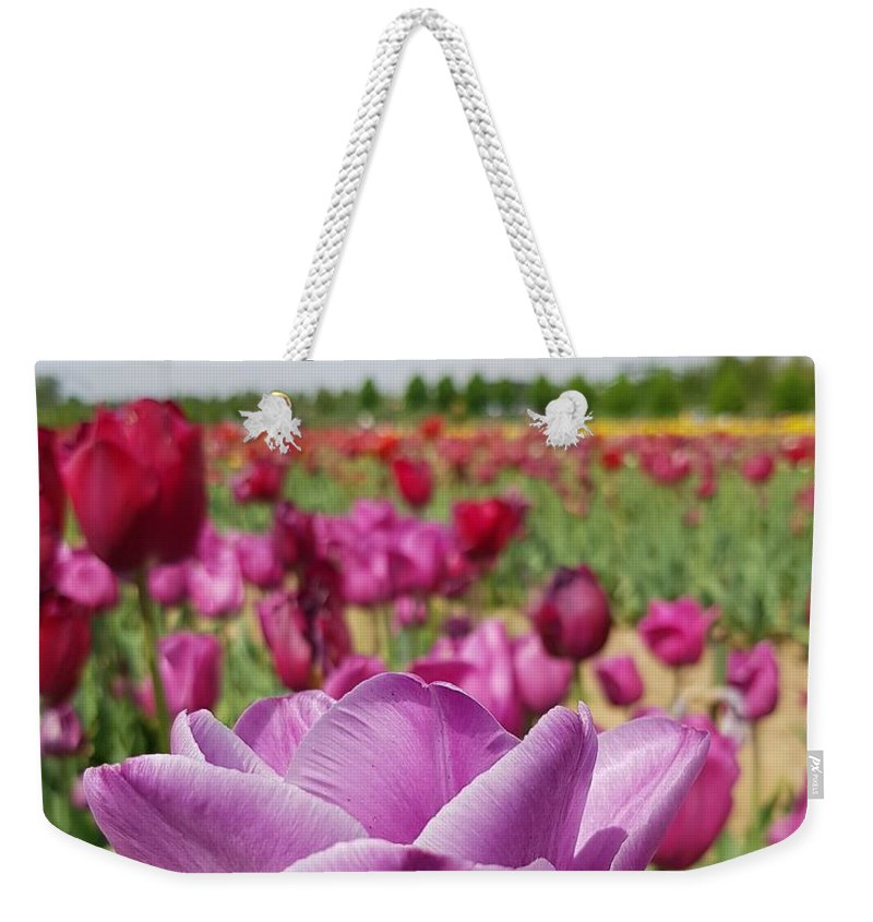 Tulip Weekender Tote Bag featuring the photograph Purple Tulip by Paola Baroni
