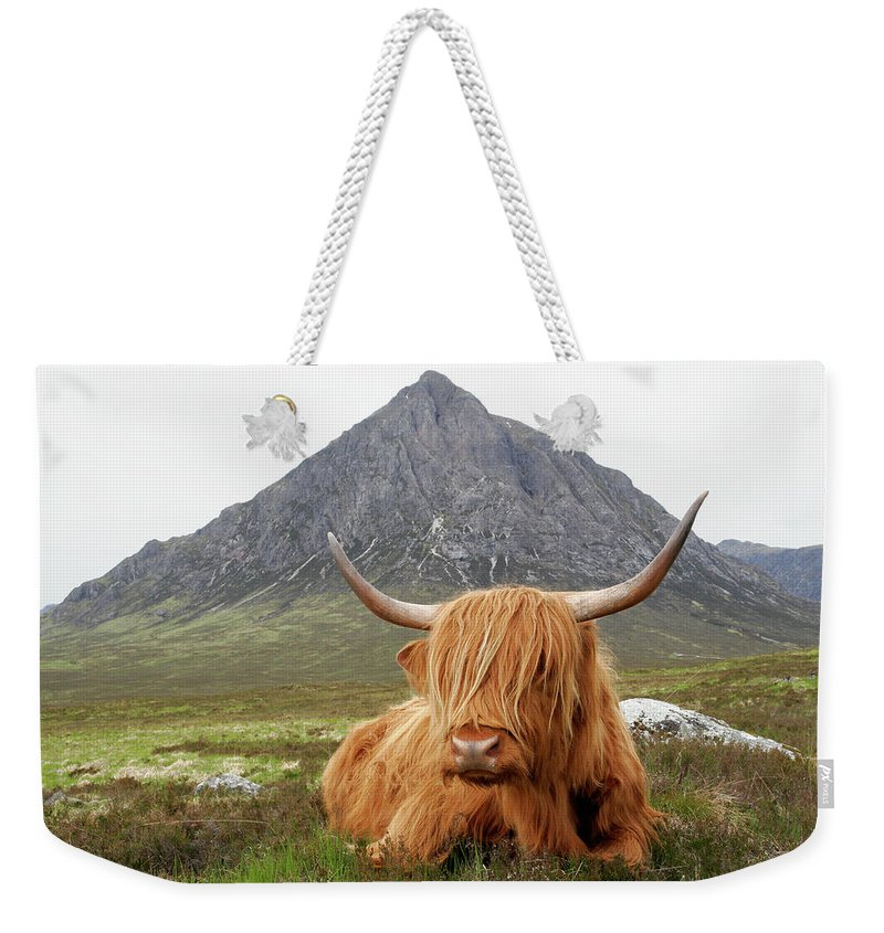 Horned Weekender Tote Bag featuring the photograph Quintessential Scotland by Thedman