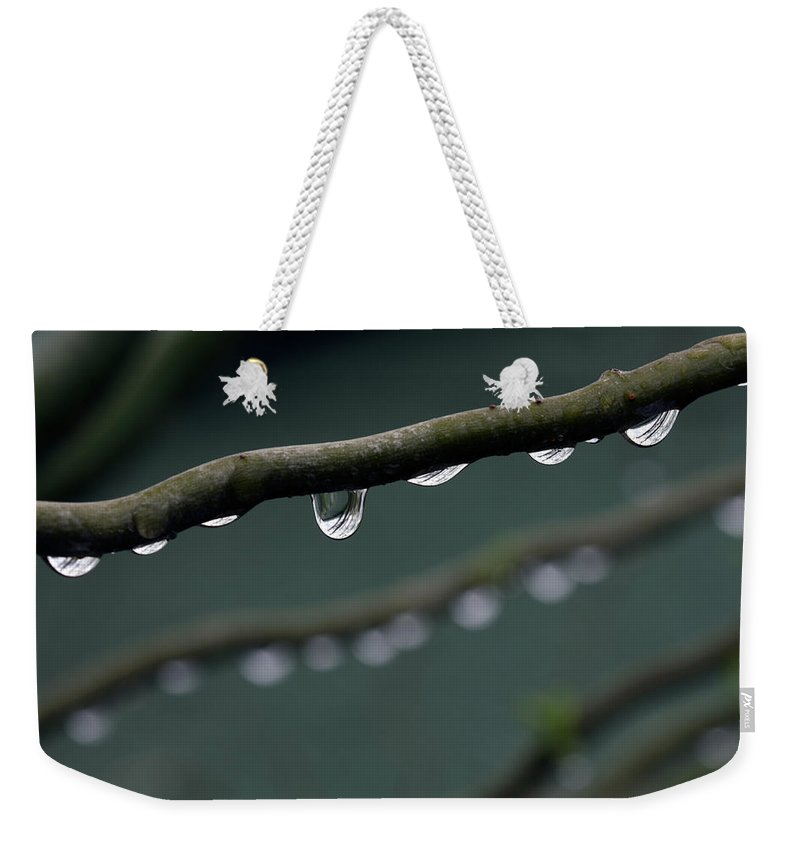 Windsor Weekender Tote Bag featuring the photograph Rain Branch by Photography By Gordana Adamovic Mladenovic