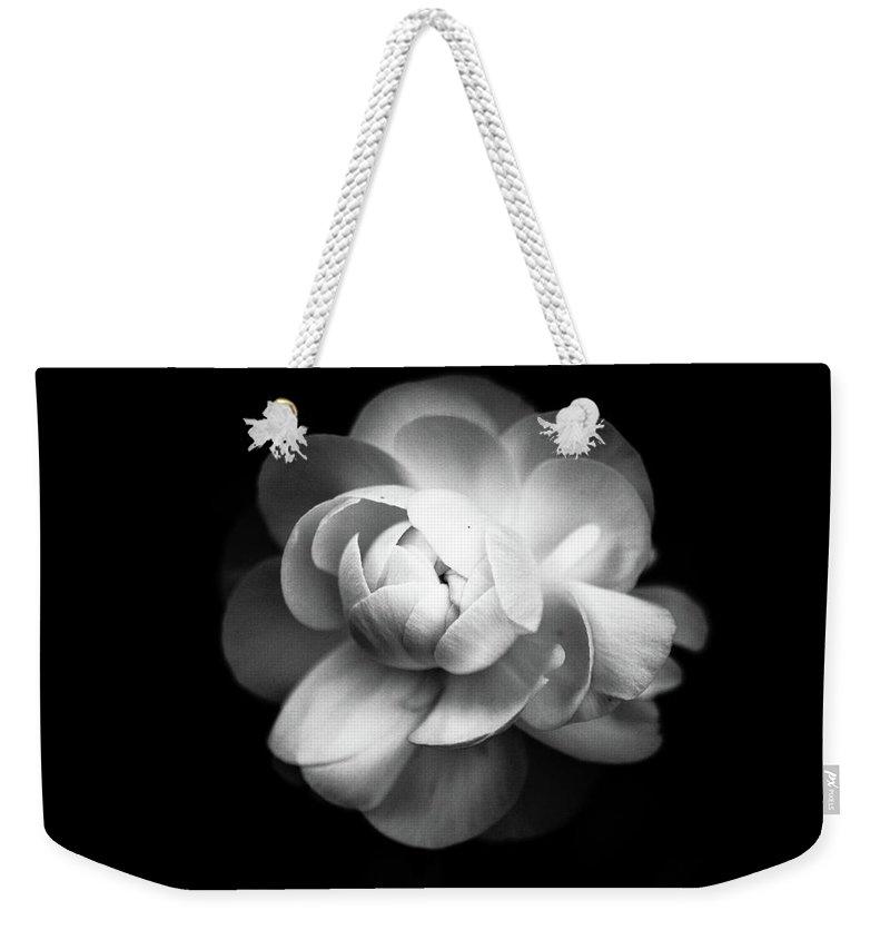 Black Background Weekender Tote Bag featuring the photograph Ranunculus Flower by Annfrau