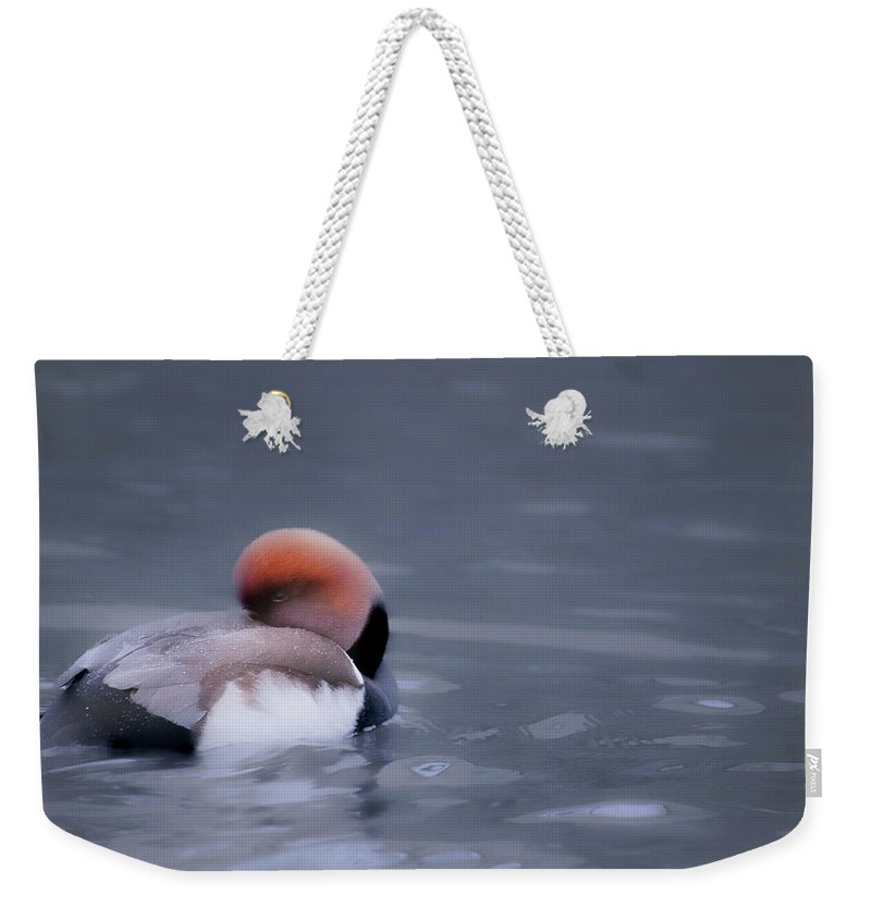 Duck Weekender Tote Bag featuring the photograph Red Crested Pochard by Valerie Kingston
