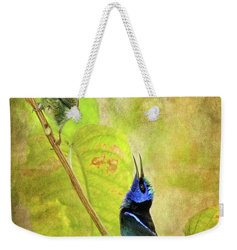 Animal Themes Weekender Tote Bag featuring the digital art Red Legged Honeycreeper Pair by Melinda Moore