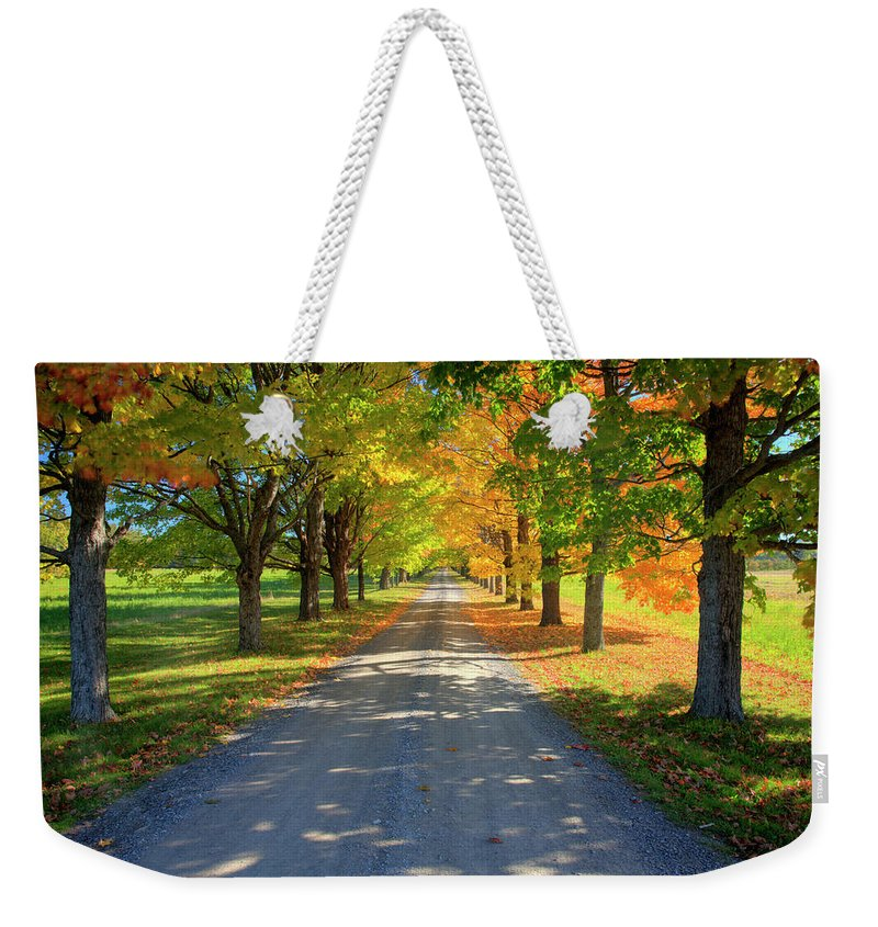 Scenics Weekender Tote Bag featuring the photograph Road Among The Trees 1 by Cworthy