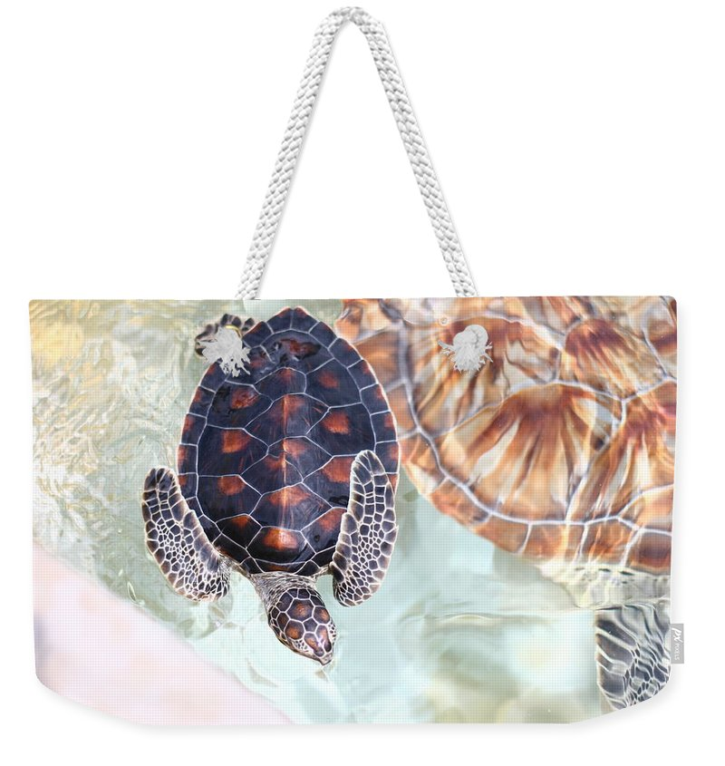 Underwater Weekender Tote Bag featuring the photograph Sea Turtle by Alyssa B. Young