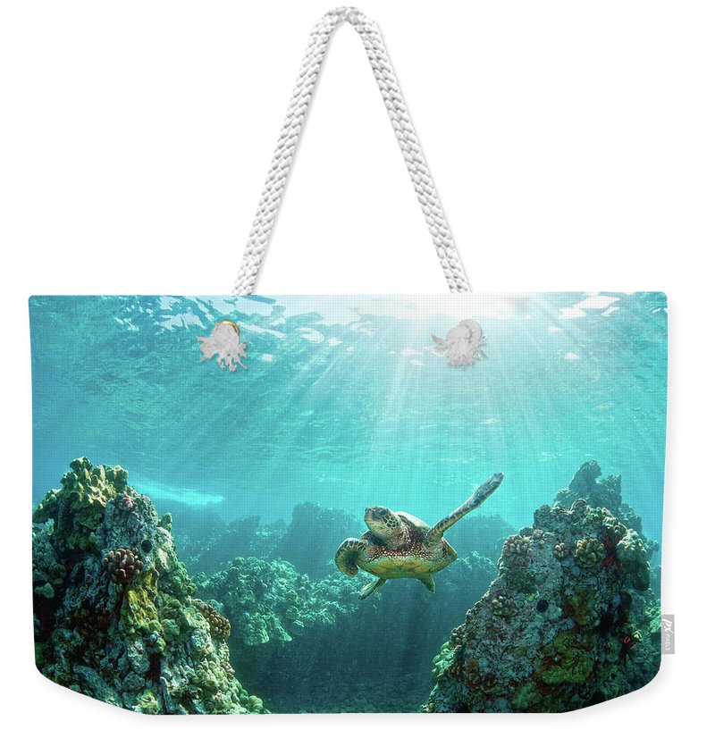 Underwater Weekender Tote Bag featuring the photograph Sea Turtle Coral Reef by M.m. Sweet