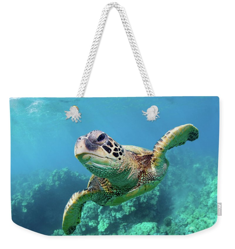 Underwater Weekender Tote Bag featuring the photograph Sea Turtle, Hawaii by M Swiet Productions