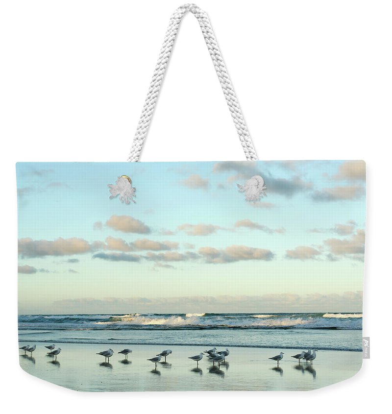Working Weekender Tote Bag featuring the photograph Seagulls In Heaven V2 by Breecedownunder