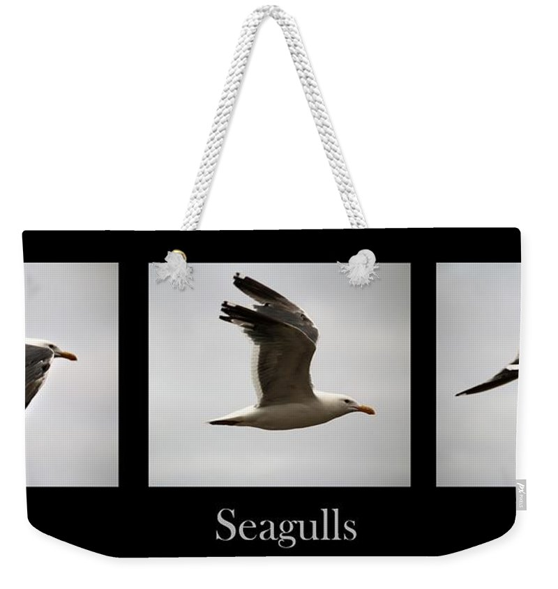 Seagulls Weekender Tote Bag featuring the photograph Seagulls by Nick Gustafson
