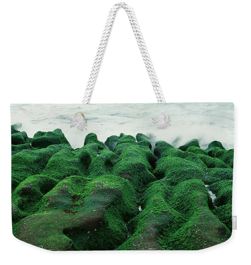 Scenics Weekender Tote Bag featuring the photograph Seaweed by Tsun