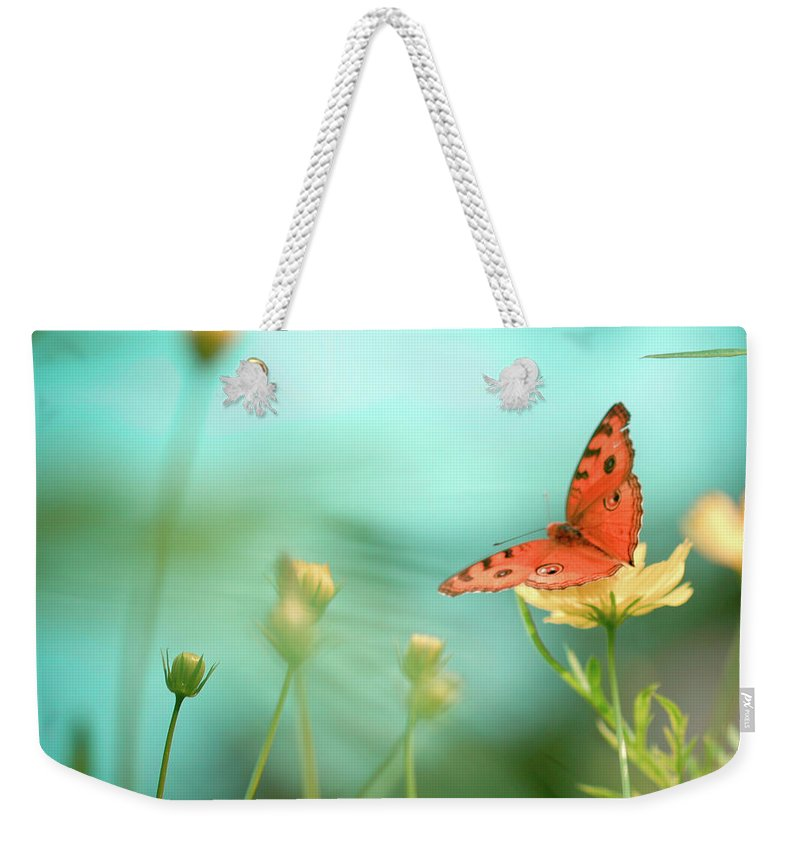 Animal Themes Weekender Tote Bag featuring the photograph She Rests In Beauty by Patricia Ramos