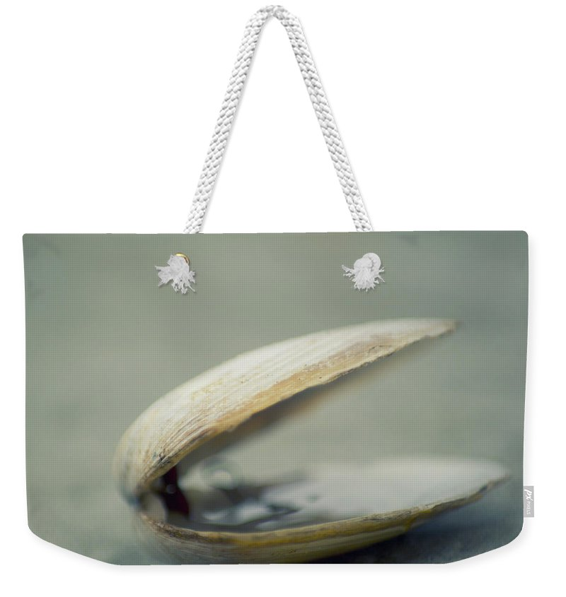 Animal Shell Weekender Tote Bag featuring the photograph Shell by Jill Ferry Photography