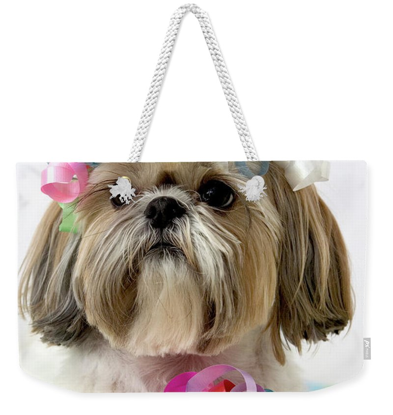Pets Weekender Tote Bag featuring the photograph Shih Tzu Dog by Geri Lavrov