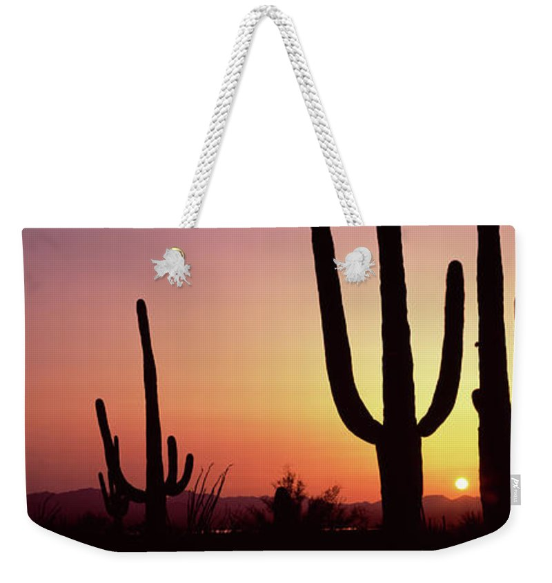 Photography Weekender Tote Bag featuring the photograph Silhouette Of Saguaro Cacti Carnegiea by Panoramic Images