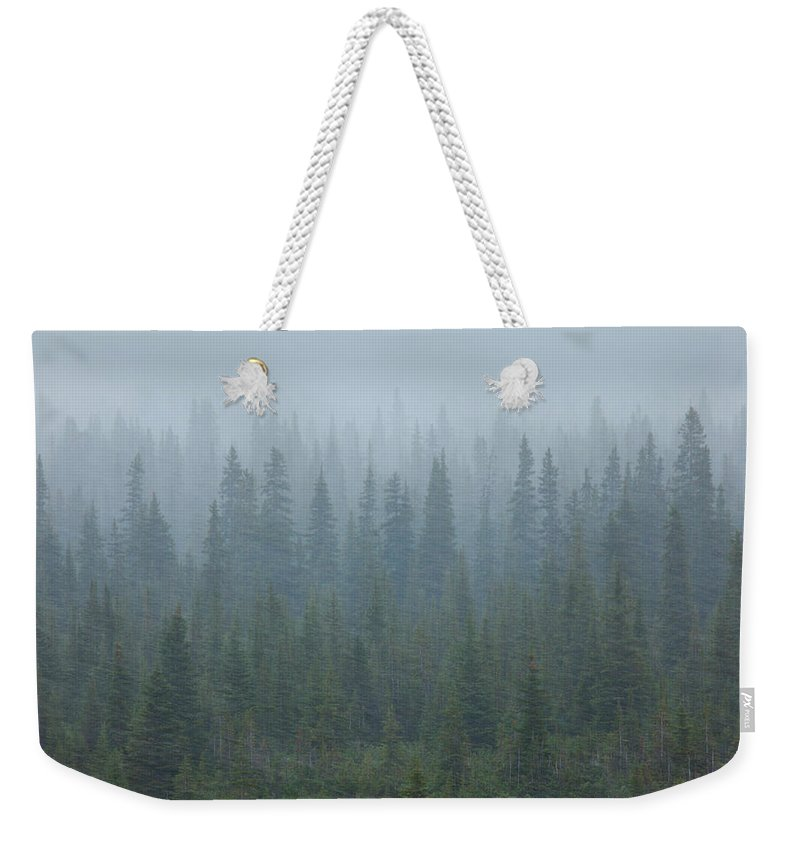 Unesco Weekender Tote Bag featuring the photograph Snow Storm In The Forests Of Jasper by Mint Images/ Art Wolfe