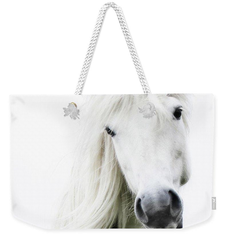 Horse Weekender Tote Bag featuring the photograph Snowhite by Gigja Einarsdottir
