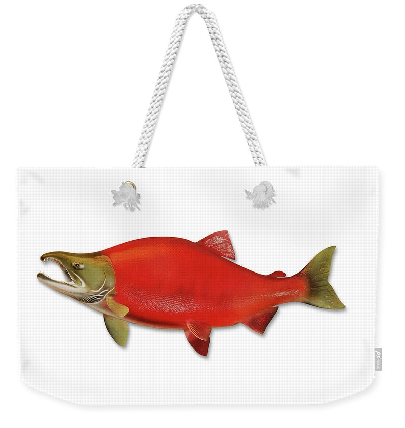 Orange Color Weekender Tote Bag featuring the photograph Sockeye Salmon With Clipping Path by Georgepeters