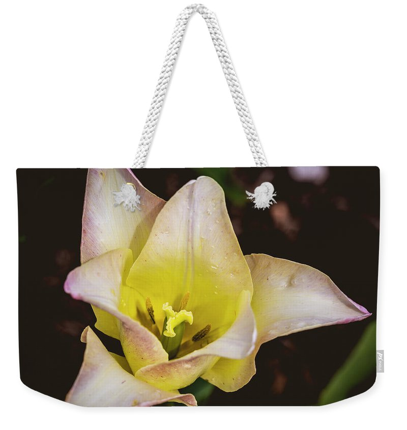 America Weekender Tote Bag featuring the photograph Soft by ProPeak Photography