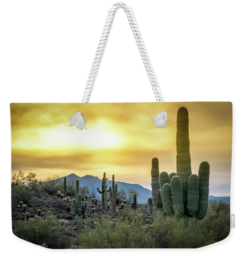 Arizona Weekender Tote Bag featuring the photograph Sonoran Sunrise by Philip Rispin