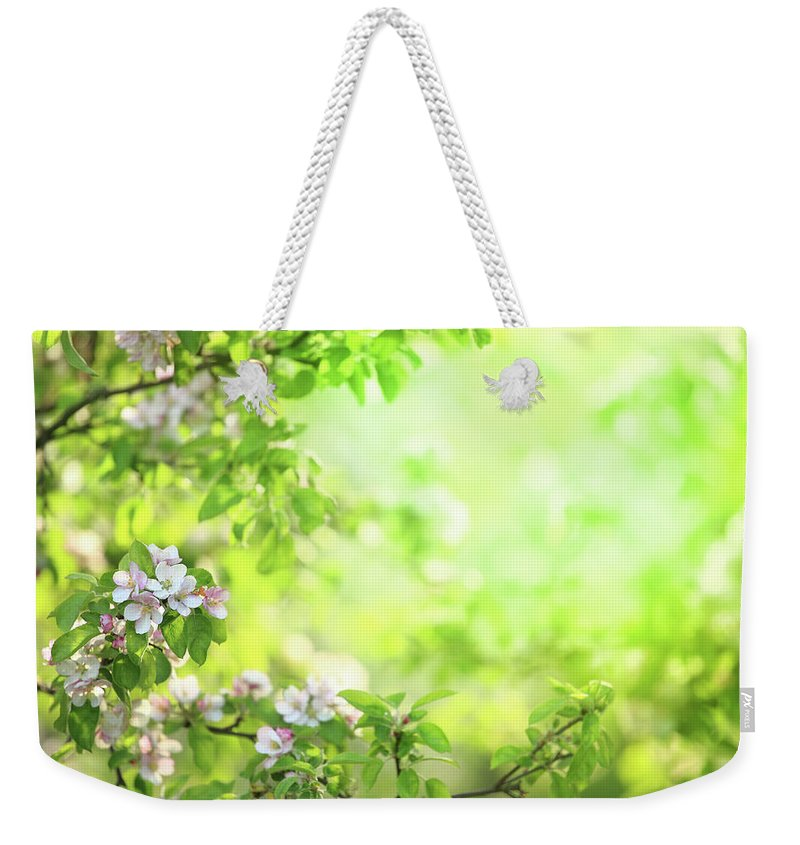 Grass Weekender Tote Bag featuring the photograph Spring Flowers Blooming Orchard - by Konradlew