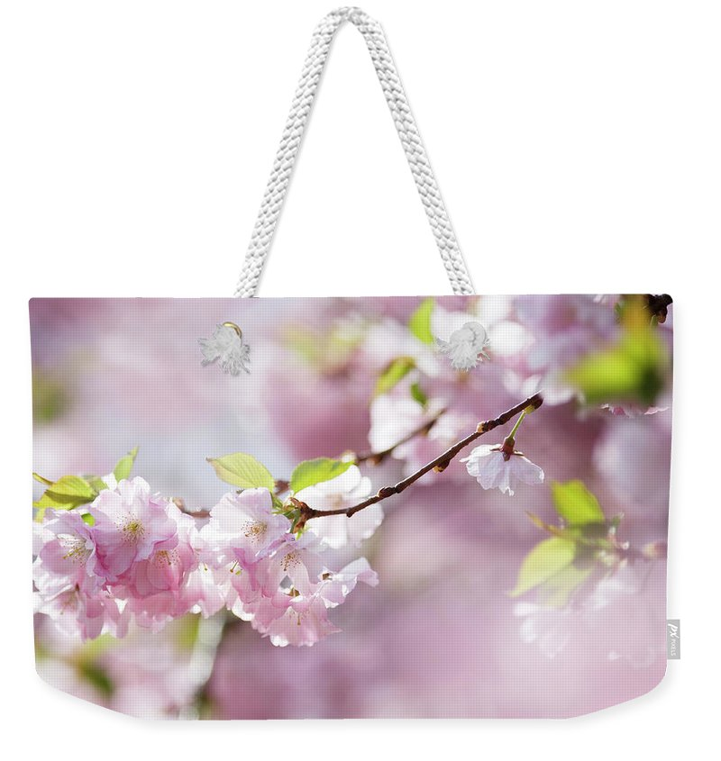 People Weekender Tote Bag featuring the photograph Spring by Goldhafen