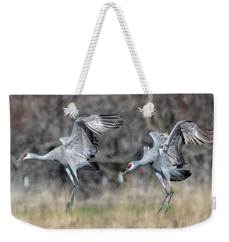 Cranes Weekender Tote Bag featuring the photograph Stay With Your Wingman by Mike Dawson