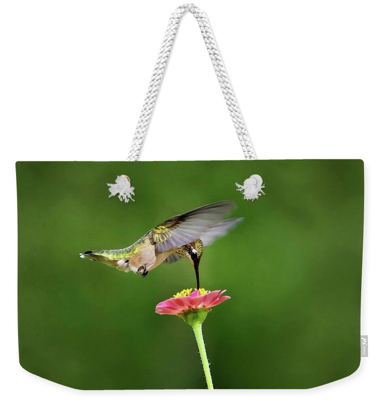 Hummingbird Weekender Tote Bag featuring the photograph Sun Sweet by Christina Rollo