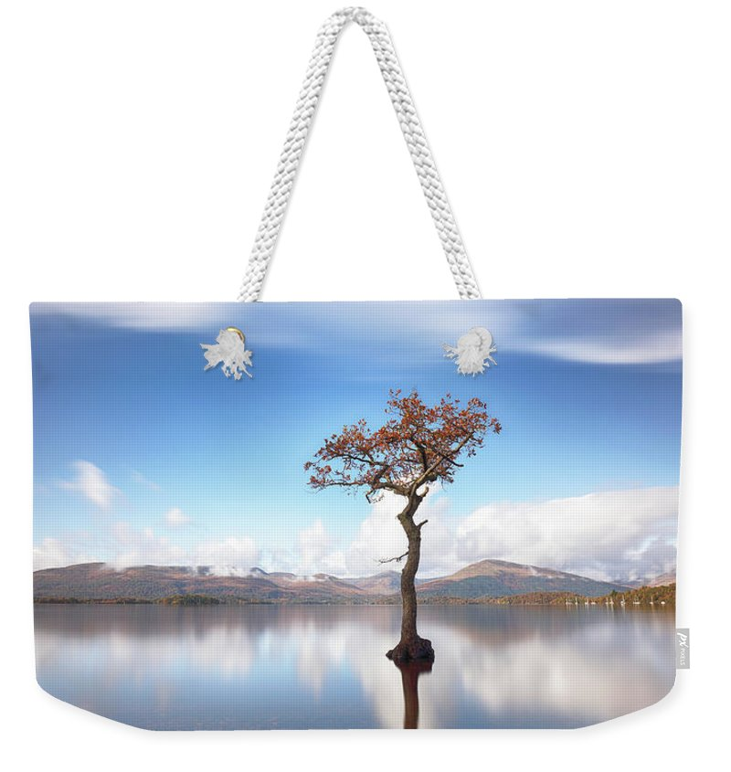 Lone Tree Weekender Tote Bag featuring the photograph Sunny Afternoon On Loch Lomond by Grant Glendinning