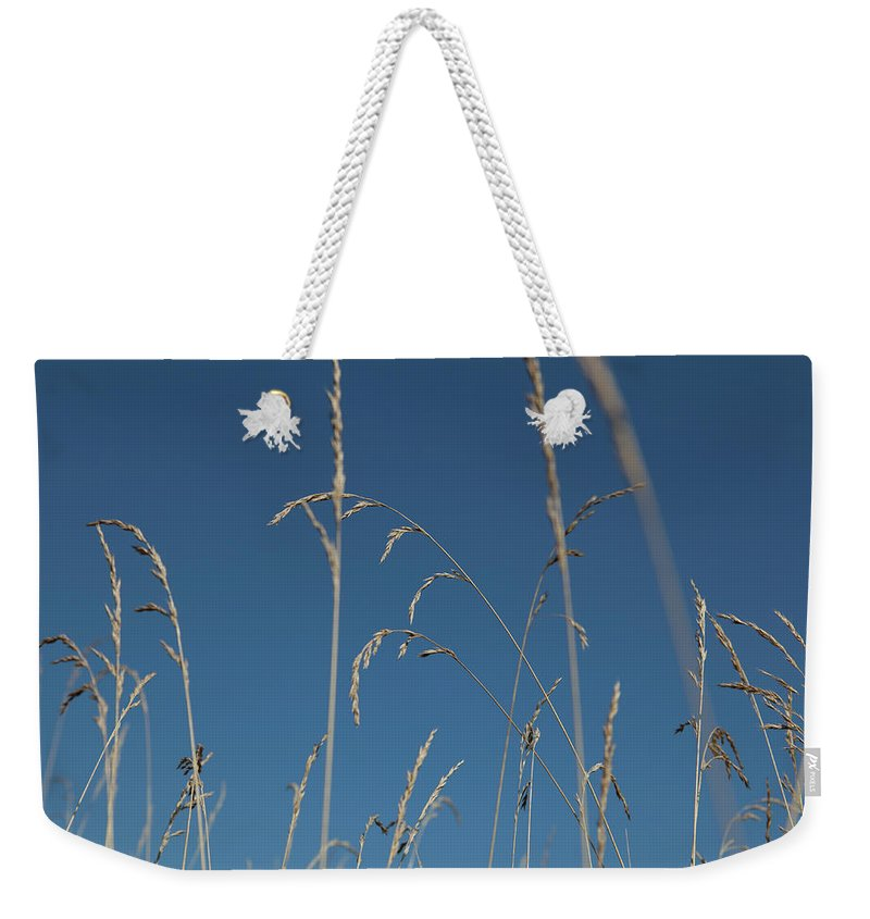 Tranquility Weekender Tote Bag featuring the photograph Tall Grasses Swaying Against A Blue Sky by Lauren Krohn