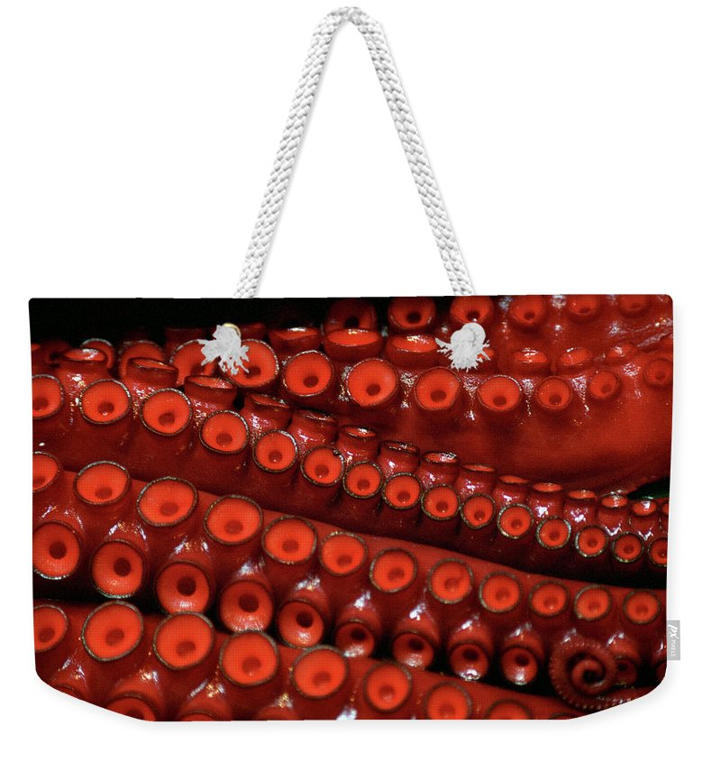 Animal Themes Weekender Tote Bag featuring the photograph Tentacles,tsukiji Fish Market by Jason Quick