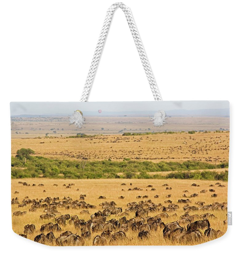 Scenics Weekender Tote Bag featuring the photograph The Masai Mara by Wldavies