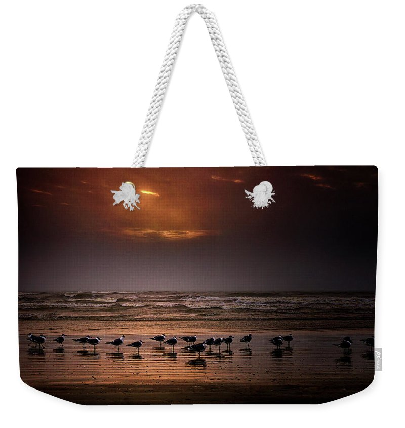 Water's Edge Weekender Tote Bag featuring the photograph Theres Gotta Be Food Around Here by Dean Fikar