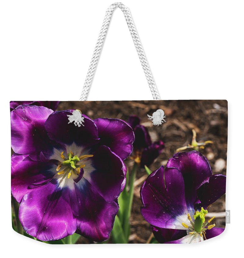 America Weekender Tote Bag featuring the photograph This Is The End, Beautiful Friend by ProPeak Photography