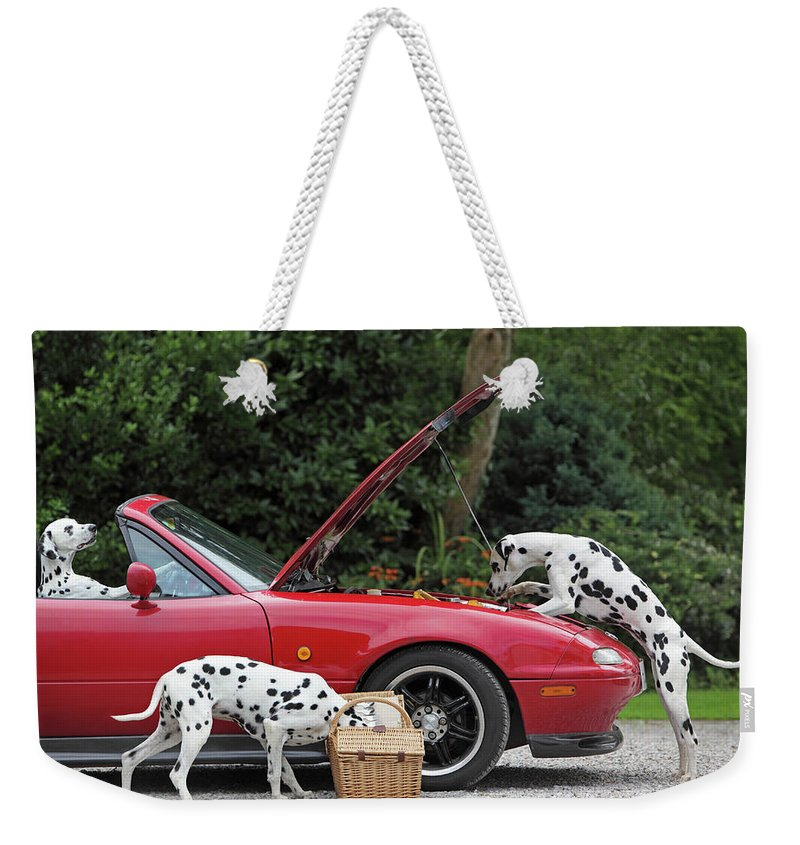 Pets Weekender Tote Bag featuring the photograph Three Dalmatians Around Red Sports Car by Peter Cade