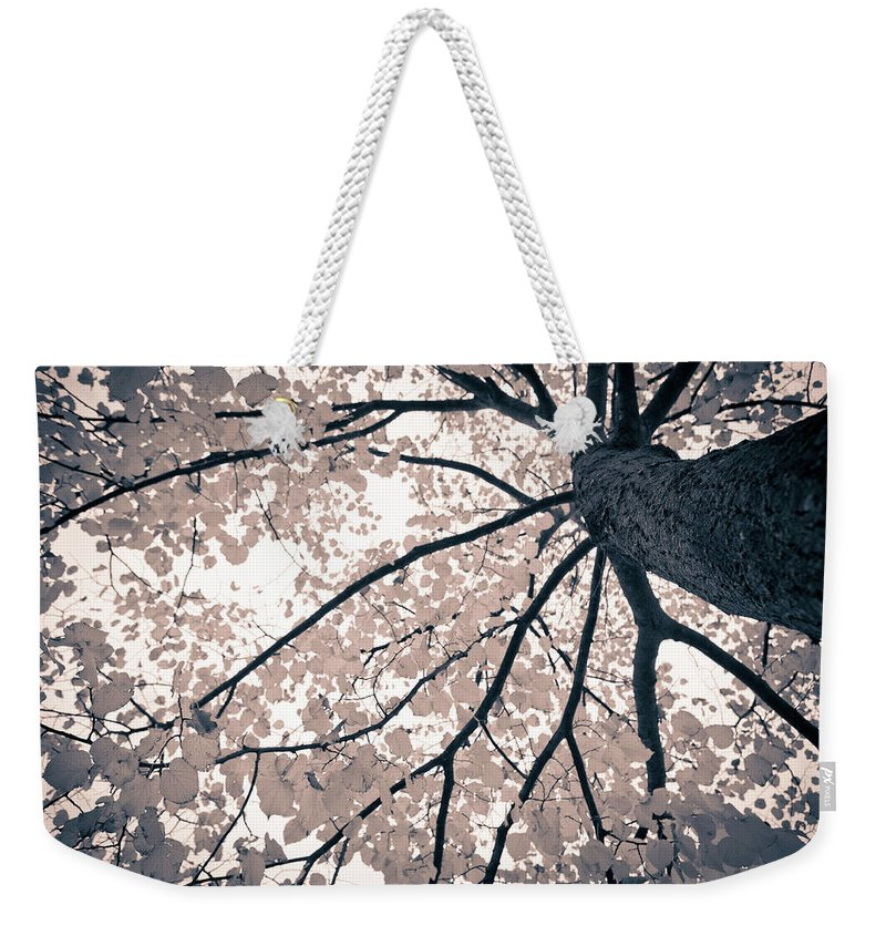Spray Weekender Tote Bag featuring the photograph Tree Branches by Gianlucabartoli