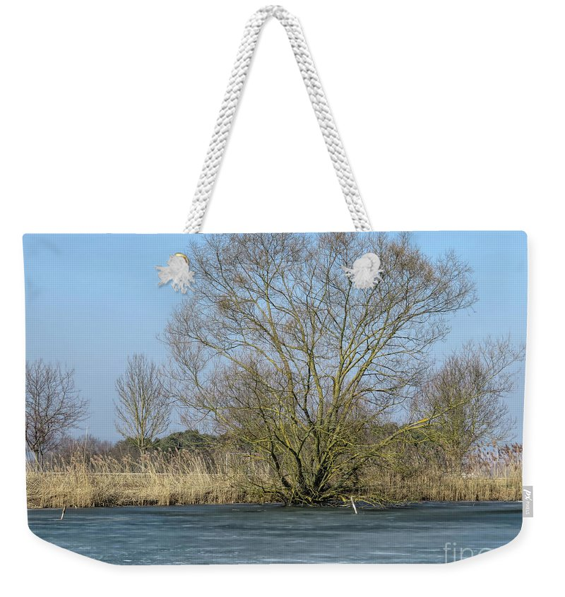 Frozen Lake Weekender Tote Bag featuring the photograph Tree On Frozen Lake by Elisabeth Lucas