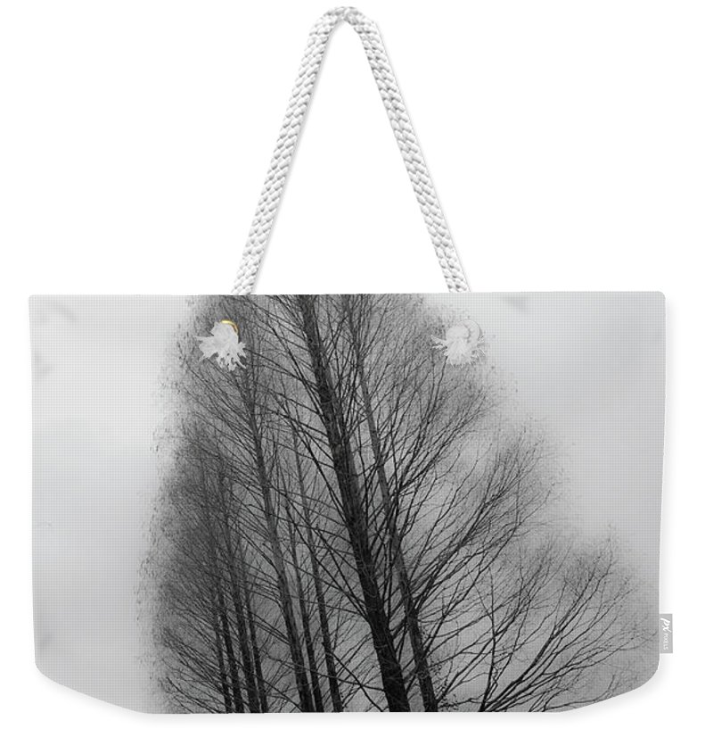 Tranquility Weekender Tote Bag featuring the photograph Trees In Winter Without Leaves by Marie Hickman