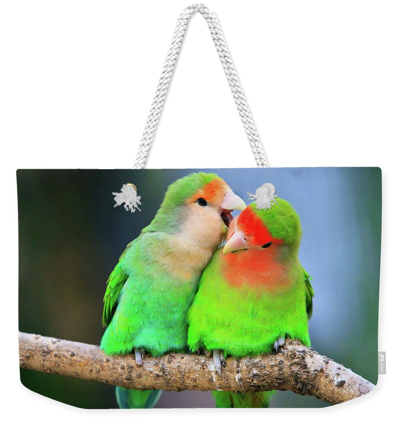 Togetherness Weekender Tote Bag featuring the photograph Two Peace-faced Lovebird by Feng Wei Photography