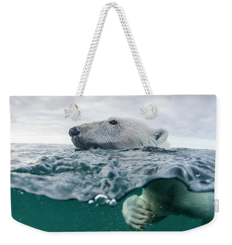 Paw Weekender Tote Bag featuring the photograph Underwater Polar Bear In Hudson Bay by Paul Souders