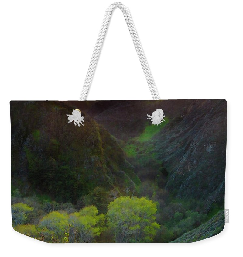 Tranquility Weekender Tote Bag featuring the photograph Usa, California, Big Sur, Bixby Bridge by Don Smith